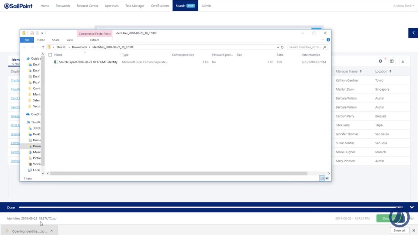 Screenshot of IdentityNow software - reporting capabilities